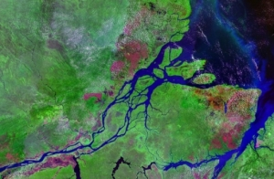 Amazon River estuaryhttp://images.gizmag.com/gallery_lrg/11206_12030952855.jpg
